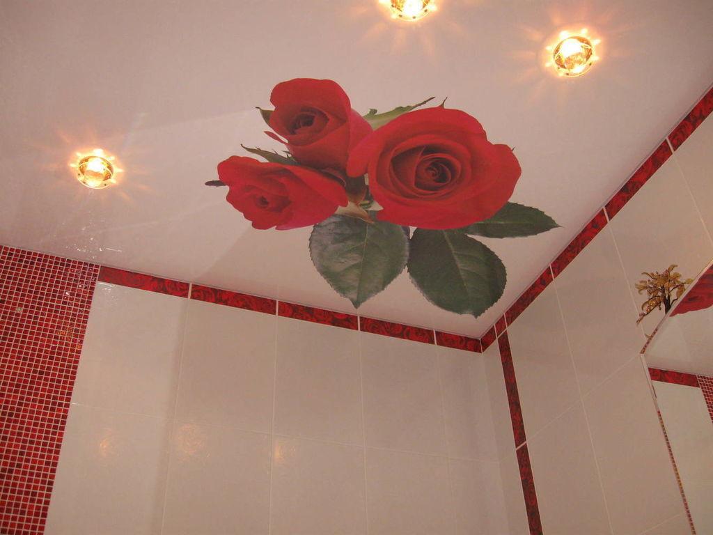 вид волос натяжные потолки с розами фото свадебный фотограф